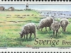 Olands Sodra Udde L/H | 20 Mar 2003