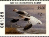 North Carolina Duck Stamp 1989
