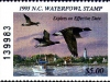 North Carolina Duck Stamp 1995