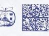 ger20061127c001